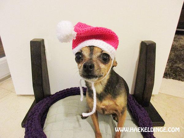 kleine hunde weihnachtsm tze in pink mit bommel h keldinge. Black Bedroom Furniture Sets. Home Design Ideas
